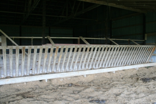 The smooth worn slats of the cow trough that line the right side of the barn.