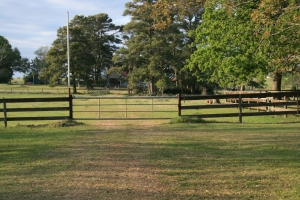 Holler or text for us to open the gate.  Gotta keep this one closed to keep the cows out of the yard.