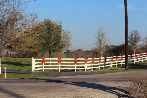 bows on white fence